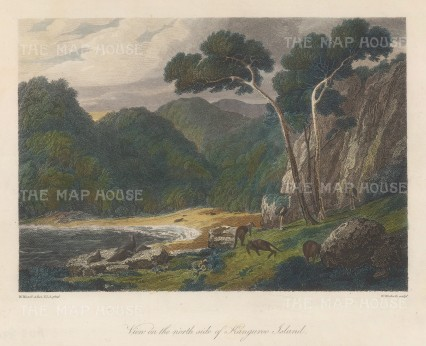 Kangaroo Island: View of the North side. After William Westall, artist on the HMS Investigator.