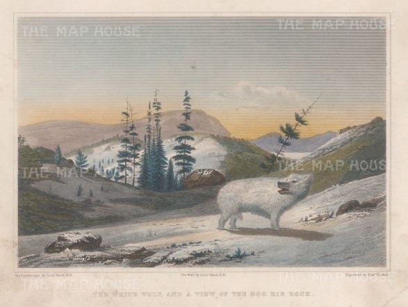 Franklin's Copper-mine Expedition 1819-22.