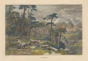 """Picturesque Mediterranean: Valdoniello, Corsica. c1880. A hand coloured original antique wood engraving. 9"""" x 7"""". [MEDp317]"""