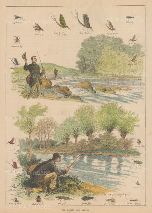 """Illustrated Sporting and Dramatic News: Trout Fishing in the Darenth. 1882. A hand coloured original antique wood engraving. 10"""" x 14"""". [FIELDp1570]"""