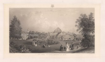Panoramic view of the Greenhouses. After William Lacey