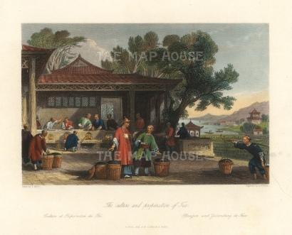"Wright: Tea. 1847. A hand coloured original antique steel engraving. 9"" x 7"". [CHNp1103]"