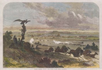 Bloemfontein: View from the environs of the capital of the Orange Free State.