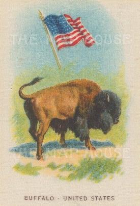 """Cigarette Cards: USA. c1912. Original printed colour on silk. 2"""" x 3"""". [ARMp125]"""