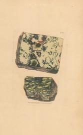 Silex steatites. Indurated steatite Portsoy, Scotland.