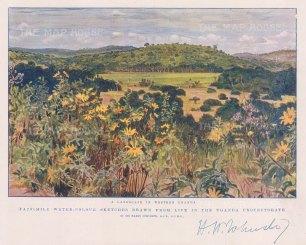 Uganda: Landscape in the west after the explorer Sir Harry Johnston.