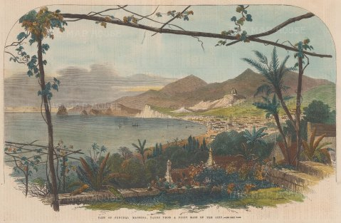 View of Funchal from a point east of the city.