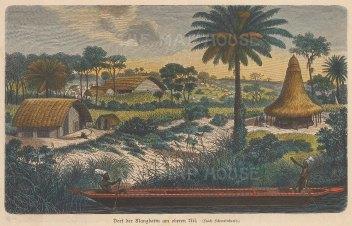 Congo: Mangbetu Tribe.