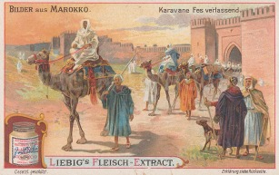 """Liebig's Extract: Fez, Morocco. c1900. An original antique chromolithograph. 4"""" x 3"""". [AFRp1242]"""