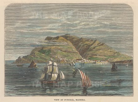 "Brown: Funchal, Madeira. c1885. A hand coloured original antique wood engraving. 5"" x 3"". [AFRp1363]"