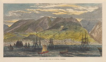 """Illustrated London News: Madeira. 1879. A hand coloured original antique wood engraving. 7"""" x 5"""". [AFRp1364]"""