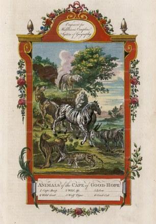 Cape Sheep, Wild Ass, Zebra, Wild Goat, Wolf Tiger and Civit Cat.
