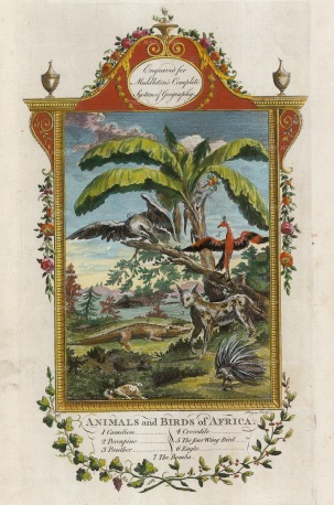 Camelion, Porcupine, Panther, Crocodile, Four Winged Bird, Eagle, Bomba. With ornate border with garlands.