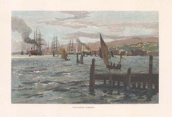 """Picturesque Australia: Wellington. 1888. A hand coloured original antique wood engraving. 11"""" x 7"""". [AUSp767]"""