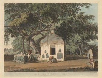 Akshaya Vat, Bihar: The sacred banyan tree at the Vishnupada temple at Gaya.
