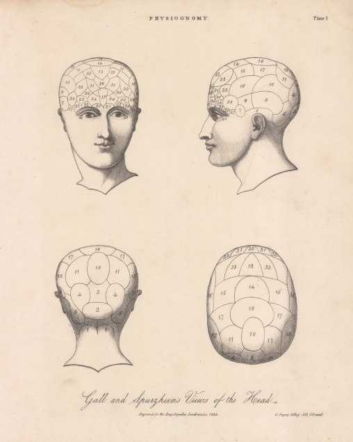 Phrenology. Franz Gall and Johann Spurzheim's division of the faculties of the brain. Key available.