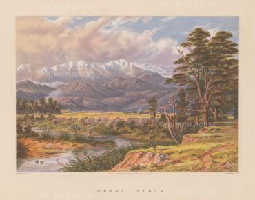 View over the plain towards the Tarawera ridge.