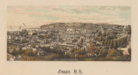 View overlooking the city towards the harbour. Wakefield's New Zealand Land Company established numerous settlements that became principal towns.