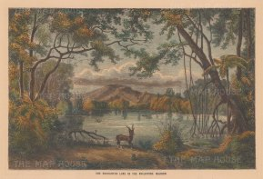 "Collins: Enchanted Lake. c1870. A hand coloured original antique wood engraving. 10"" x 7"". [SEASp1390]"