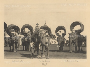 The King's Elephants in 1888. Published in Hanoi. Dieulefils worked for L'Ecole Francaise d'Extreme Orient and first exhibited his photographs at the l'Exposition universelle de Paris 1889.