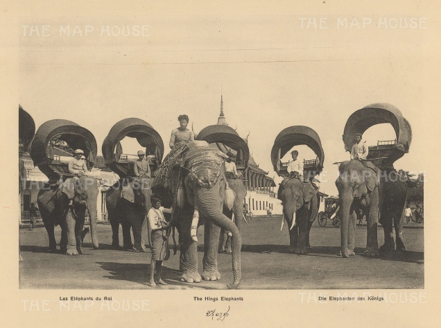 Cambodia: The King's Elephants in 1888. Published in Hanoi. Dieulefils worked for L'Ecole Francaise d'Extreme Orient and first exhibited his photographs at the l'Exposition universelle de Paris 1889.