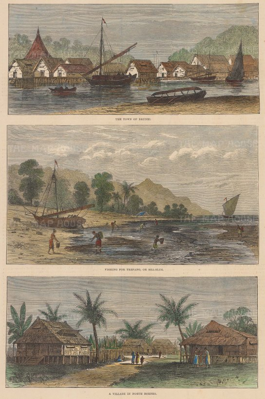 Views of Brunei Town (Bandar Seri Begawan), fishing for Trepang and a village in the North.