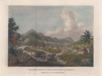 Trewlawney Town (Maroon Town): View of the early settlement.