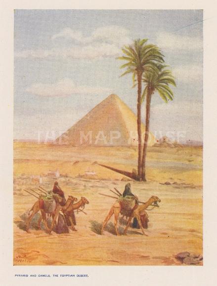 Pyramids and a Camel Caravan. After F Wright.
