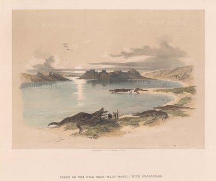 Scene with Crocodiles: Near Wady Dabod.