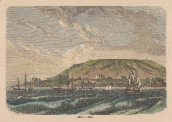 "Collins: Isabela Island (Albermarle Island), Galapagos Islands. c1870. A hand coloured original antique wood engraving. 9"" x 6"". [SAMp1474]"