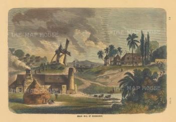 View of a steam powered sugar mill and plantation houses.