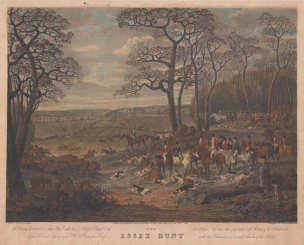 Essex Hunt: Gone to Ground at Man Wood with a view of Hatfield Broad Oak.