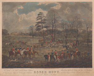 Essex Hunt: The Death from Dunnon High Wood at Easton Lodge.