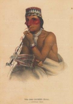 Chippewa Chief.