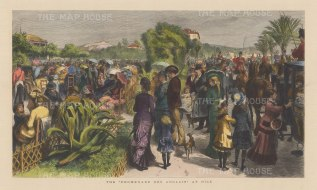 """Illustrated London News: Nice. 1881. A hand coloured original antique wood engraving. 20"""" x 14"""". [FRp911]"""