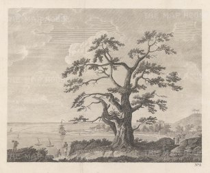 "Cook's Voyages: Matavi Bay. Tahiti. 1773. An original antique copper engraving. 10"" x 8"" [PLYp250]"